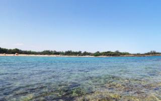 5 praias lindas na Puglia que você tem que conhecer - Torre Guaceto - Carovigno