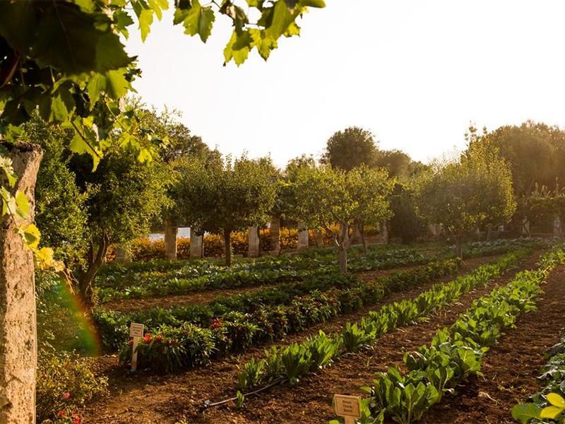 Forbes enaltece a Puglia
