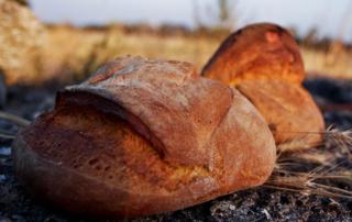 O Pão de Altamura é o preferido dos italianos