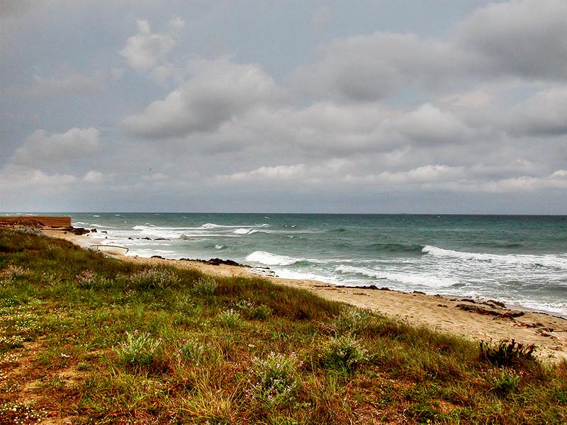 WWF na Puglia