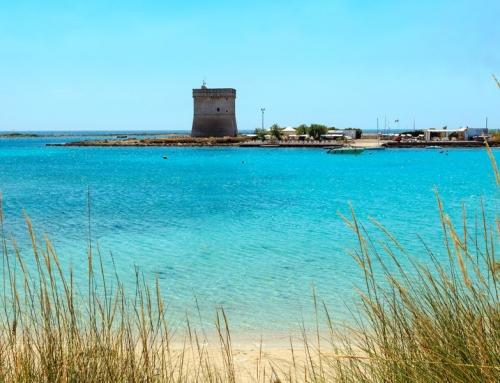 Oscar do Ecoturismo 2021 para Porto Cesareo
